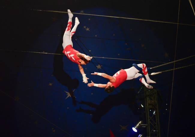 Circus coming to Raynes Park and Putney
