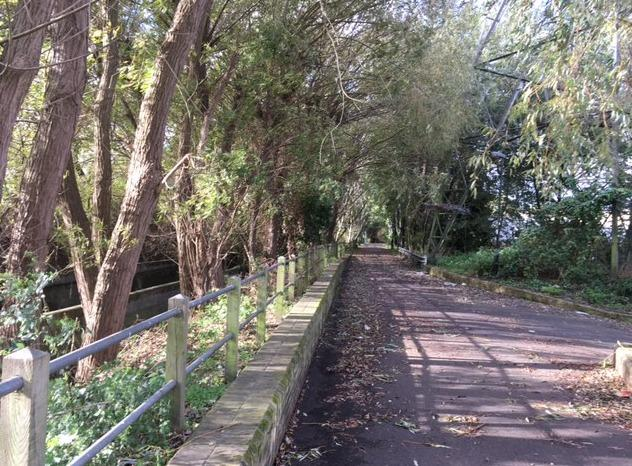 Wandle Trail. Picture: haydonsroadnorthcommunity.wordpress.com