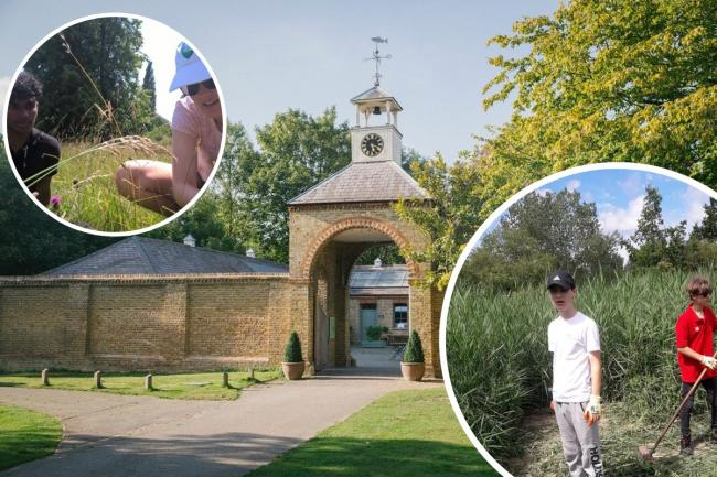 New project to launch at Morden Hall Park