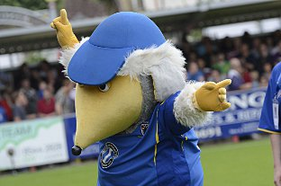Banned from the torch parade: Haydon the Womble