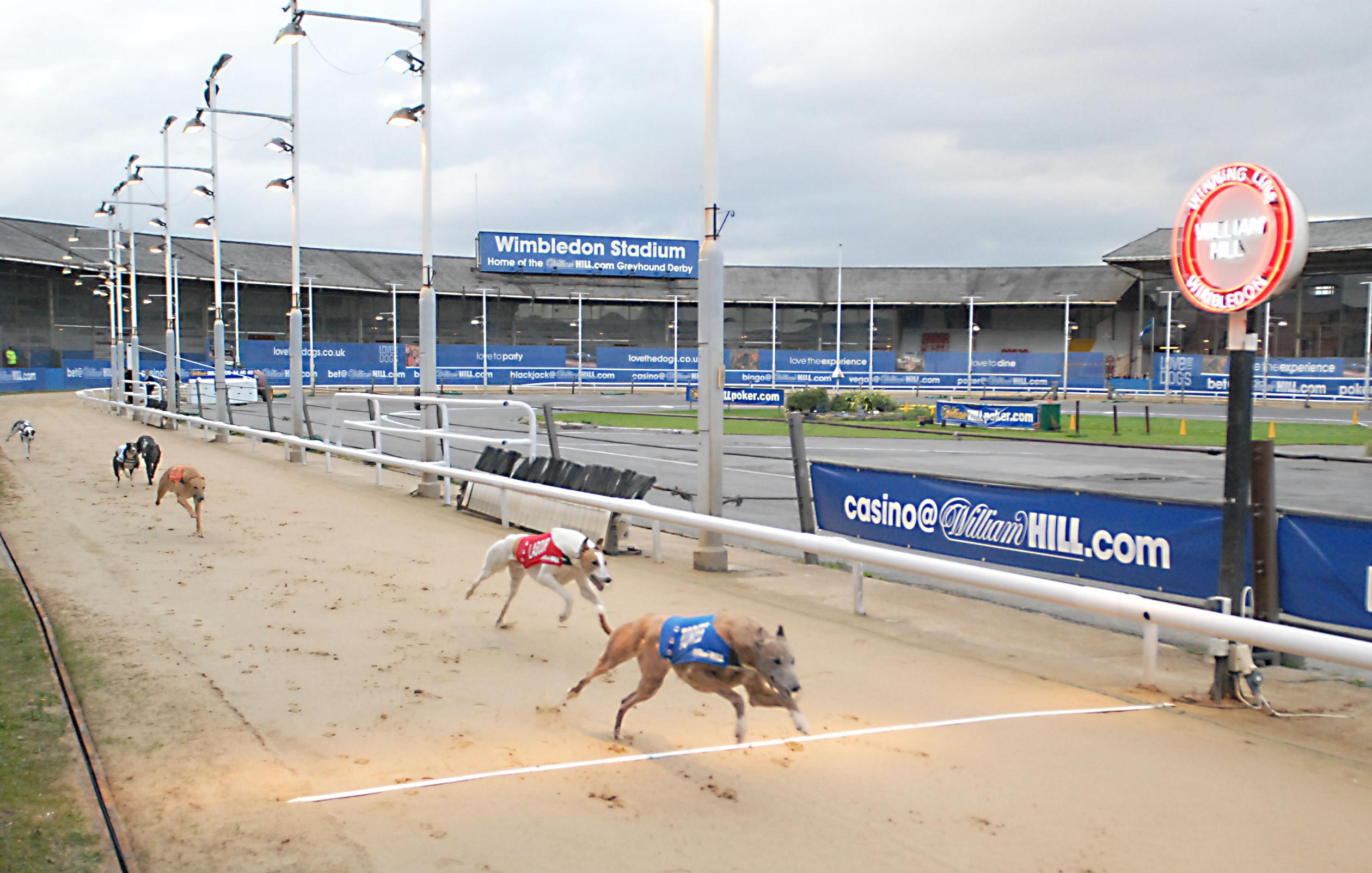 The Plough Lane venue is currently used for greyhound racing