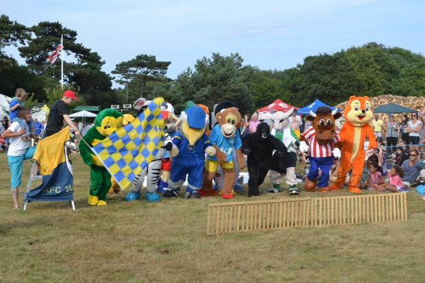 The AFC Wimbledon Mascot Triathlon raised over £600 for the Children's Liver Disease Foundation