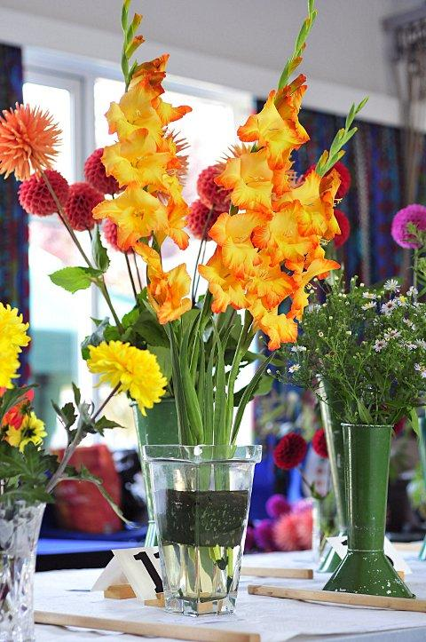 Hundreds of visitors flocked to the Epsom Garden Society's autumn show