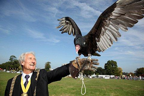 Mayor of Lambeth, Councillor Clive Bennett, with Otis a turkey vulture