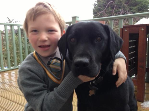 Alex Vickery, six, with two-year-old Labrador Ruddles