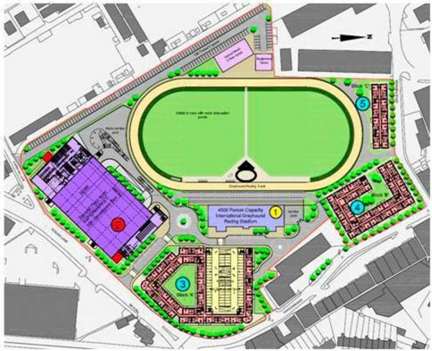 Irish magnate unveils plan for £60m dog track