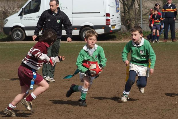 Wimbledon Guardian: In peril: Mini rugby is likely to become dangerous under new RFU ruling, says Park coach