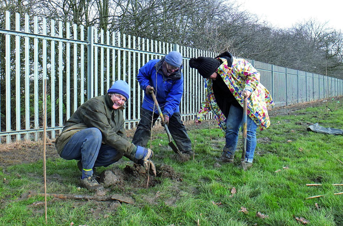 Volunteers brave bad weather to plant community garden