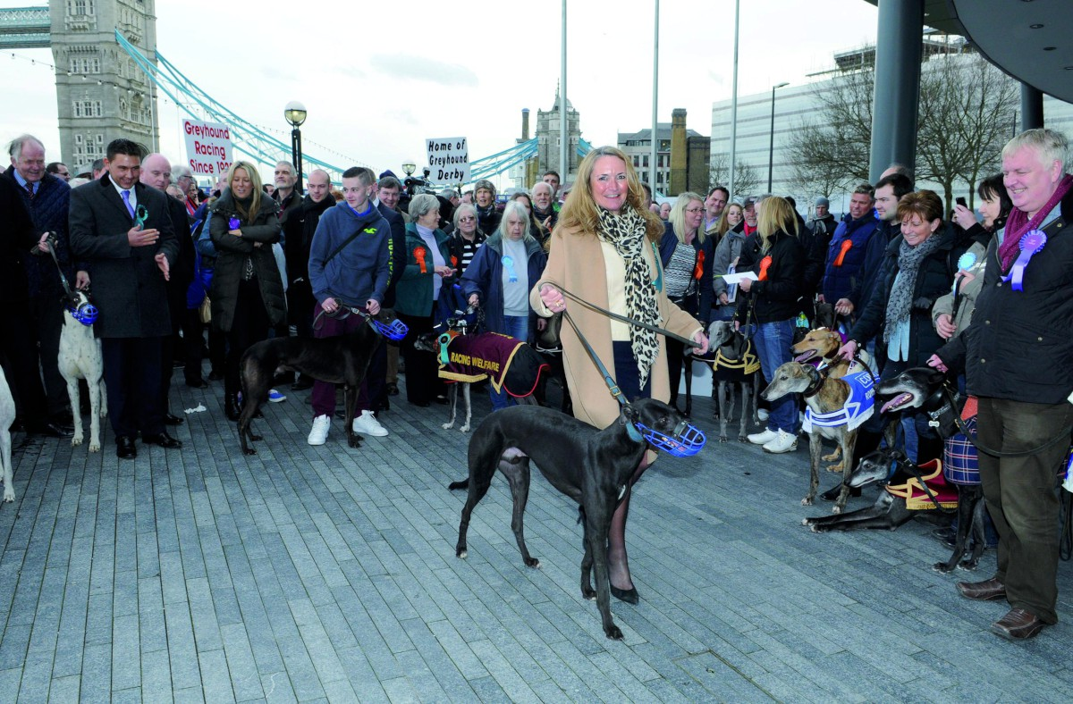 Greyhound racing supporters take Plough Lane fight to City Hall