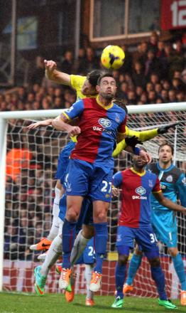Survival: Delaney reckons Crystal Palace's Premier League future hangs on a solid defence                   SP78371