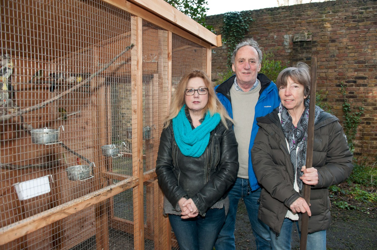 L-R Alison Young, Chris Mountford and Anne Peacock by the temporary aviary before it was damaged