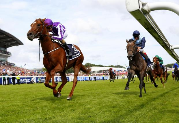 Wimbledon Guardian: Australia and Kingston Hill in the Investec Derby. Photo: racingfotos.com