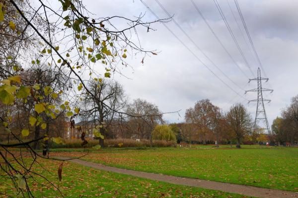 Crime scene: the alleged rape took place in Wandle Park