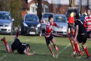 Coming through: Luke Carter in action during Rosslyn Park's weekend win over Blaydon             Picture: David Whittam