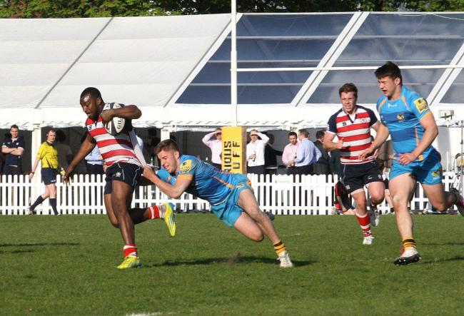 High octane action: Rosslyn Park and Wasps in action at last year's London Floodlit Sevens