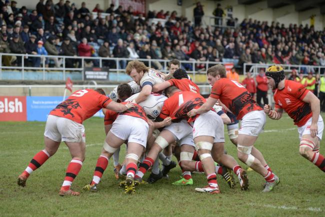 Thinking big: London Welsh finished fifth in the Championship table, well above neighbours London Scottish