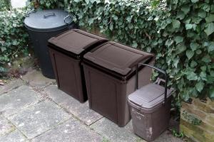 The two brown recycling bins proposed by the 'No Wheelies Campaign'