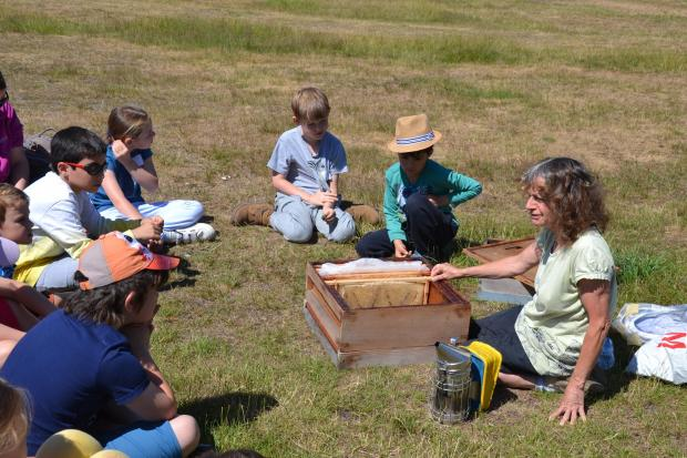 Alison Pelikan on Wimbledon Common showing a beehive to children.