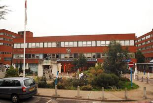 Wimbledon Guardian:  The major IT system planned for St George's Hospital has been put on hold