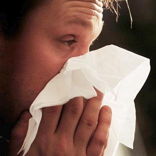Wimbledon Guardian: More than half of us could be suffering from hay fever by 2060, a researcher has said